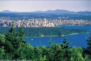 vancouver-city-view-forest_2386